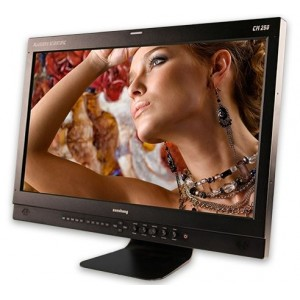 "24.5"" 1920x1080 Reference OLED Monitor with Basic Desktop Stand"
